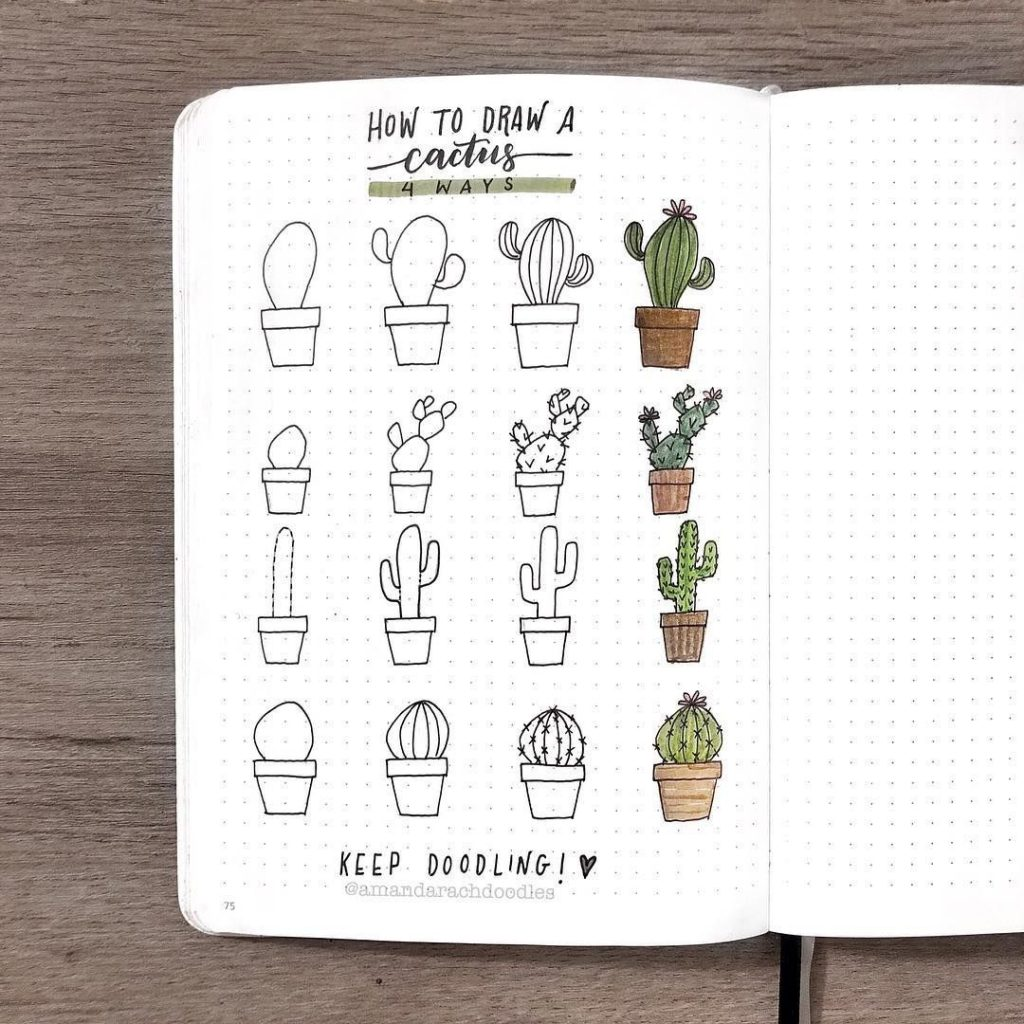 bullet journal doodles - cactus
