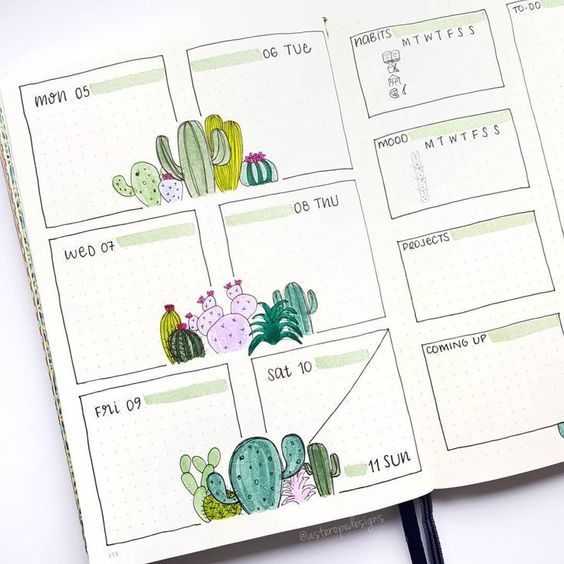 block layout weekly spread - nice cactus