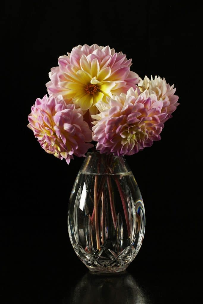 virtually celebrate mother's day - send her fresh flowers